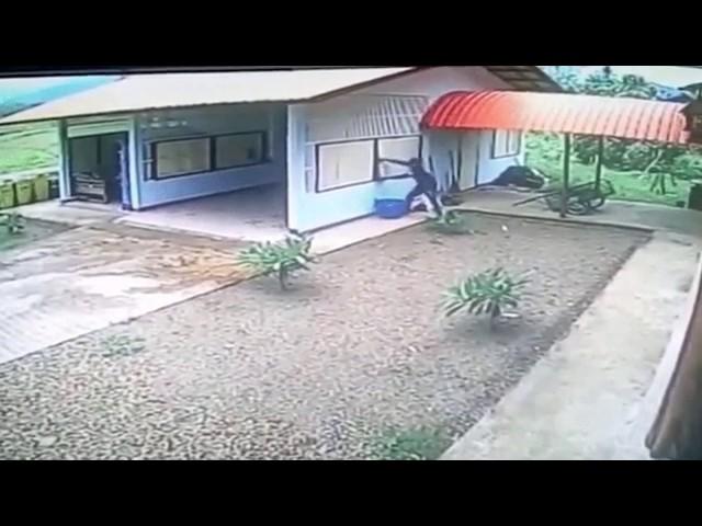 Clueless burglar breaks into window of doorless garage