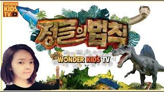쉿! 숨소리도 내면 안돼! 악어가 깨어난다고! kids home schooling l learn & play l 동물공부 l welcome to the jungle!