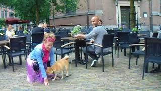 02-06-2018-foute-vrienden--arnhem-39.AVI