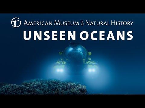 Unseen Oceans Opens March 12