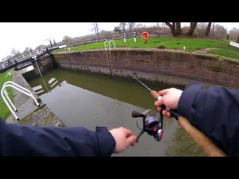 DROPSHOTTING FOR PERCH... WITH WORMS!