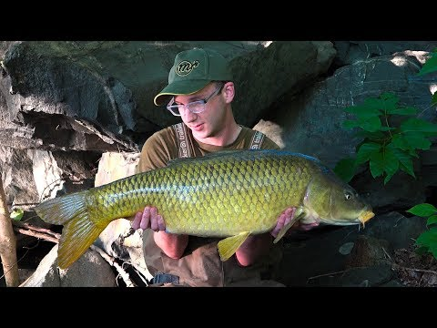 AMERICAN CARP FISHING - The Connecticut River Trials #2 (Crazy Flood!)