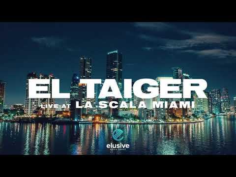 Смотреть клип El Taiger - Te Gusto