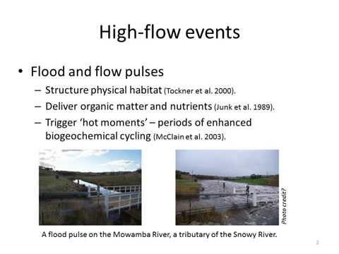Functional responses to environmental flows