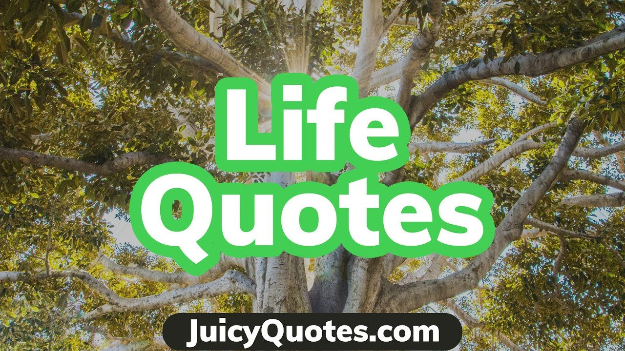 Favorite Sayings About Life My Favorite Life Quotes And Sayings  Most Positive Quotes About