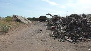 """""""Глазам не верим"""": в Волгограде зачищают от свалок крупнейший в Европе речной остров"""