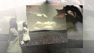 Lưng Chừng Hạnh Phúc - Bảo Thy (Lyric Video)