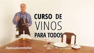 Curso de vinos para todos!