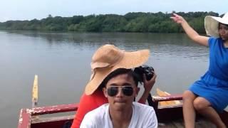 Jalan Jalan Di Taman Wisata Alam Mangrove (Wisata Bedul) Banyuwangi Jawa Timur