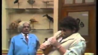 patropi seu pata tro pi escolinha do professor raimundo 1994