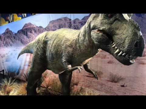 Animatronic dinosaurs at the Bishop Museum