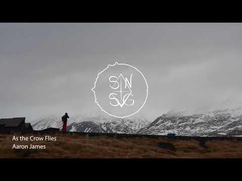 Aaron James - As the Crow Flies