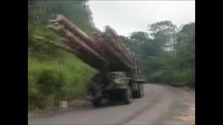 Tak się w Rosji ładuje drzewo na ciężarówkę