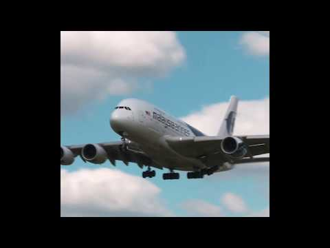 Forex trading for beginners malaysia flight catherine avery investment management