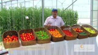 Greenhouse Tour - Part 1 - Going Green - El Dorado Royale