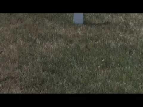 RFK Gravesite - stock footage