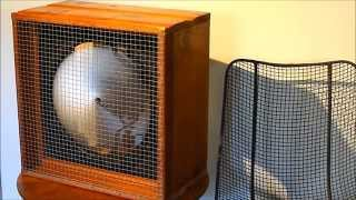 Homemade Box Fan with 1550 RPM vintage Redmond Co. Motor