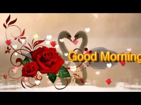 Beautiful good morning animated wishes greetings to herhim whatsapp beautiful good morning animated wishes greetings to herhim whatsapp facebook message video 4 m4hsunfo