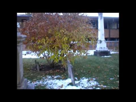 5 Paranormal Investigations In Columbus Ohio