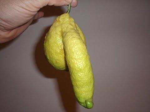 20 Weirdest Fruits & Vegetables! PENIS LEMON?!