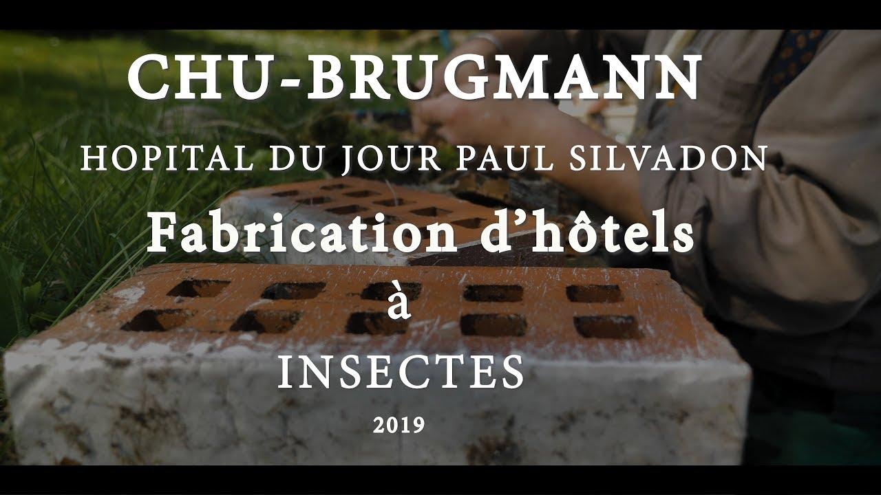 Hotel A Insecte Fabrication chu brugmann hôtels à insectes hôpital du jour paul sivadon ( 2019 )