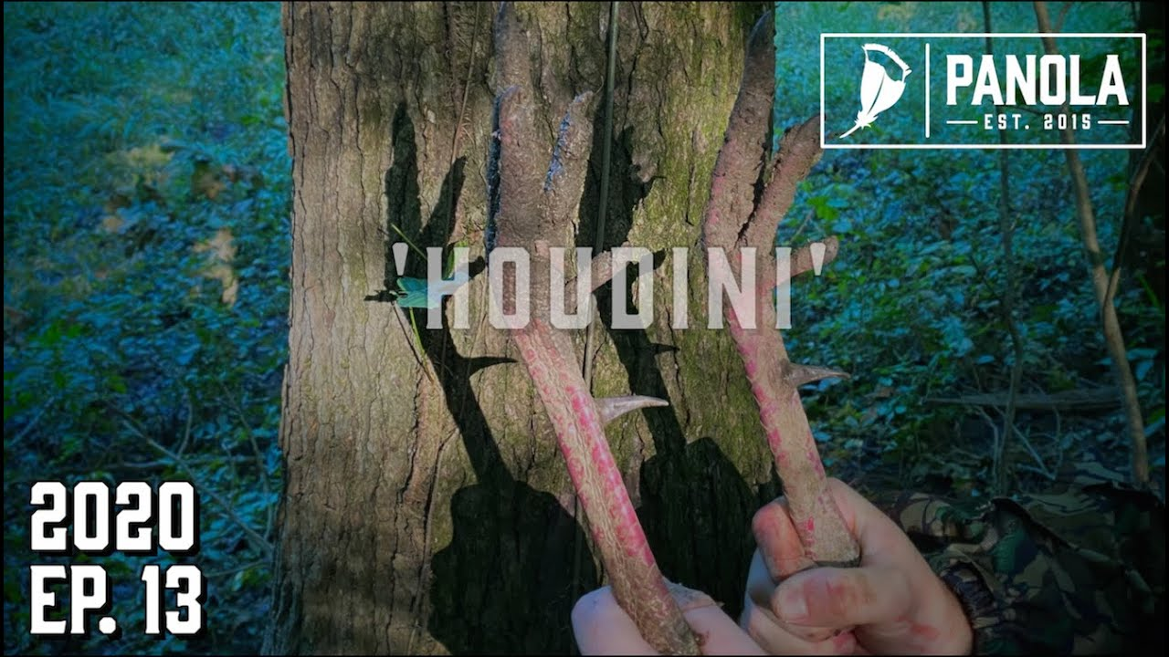 Download 2020 EP. 13- 'HOUDINI' PT. 2- HARD TO KILL- GOBBLING AT THUNDER