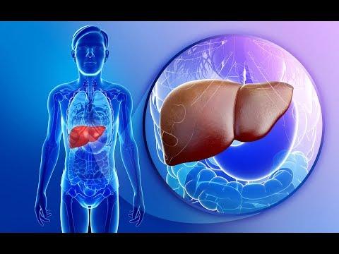 Цирроз печени - причины, симптомы, диагностика и лечение