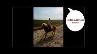 Accueil de cavaliers et chevaux au Camping de la Haie Penée