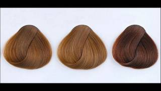 What Are Different Shades Of Mocha  Hair Color
