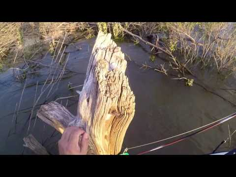 Out In The Woods Top Cat Fishing 4-21-17