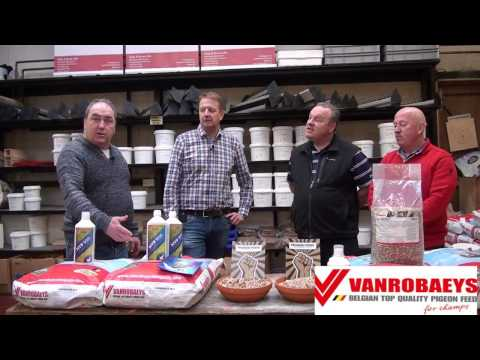 VANROBAEYS presentation at Sandyhill Pigeon Supplies Dublin.