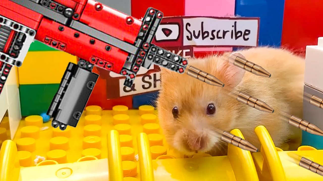 😱🐹 OBSTACLE COURSE Hamster Traps Lego Gun 😱 Hamster Escape Traps Cardboard & Lego