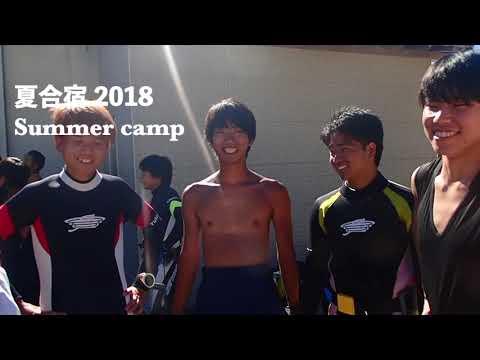 【近畿大学】潜水部2019