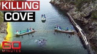 Gambar cover Exposing Japan's dolphin killing cove | 60 Minutes Australia