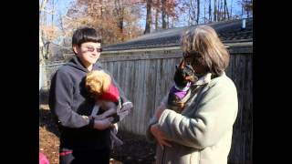 Abused Puppy Mill Dog Rescued And Given New Life By Caring Prisoner.
