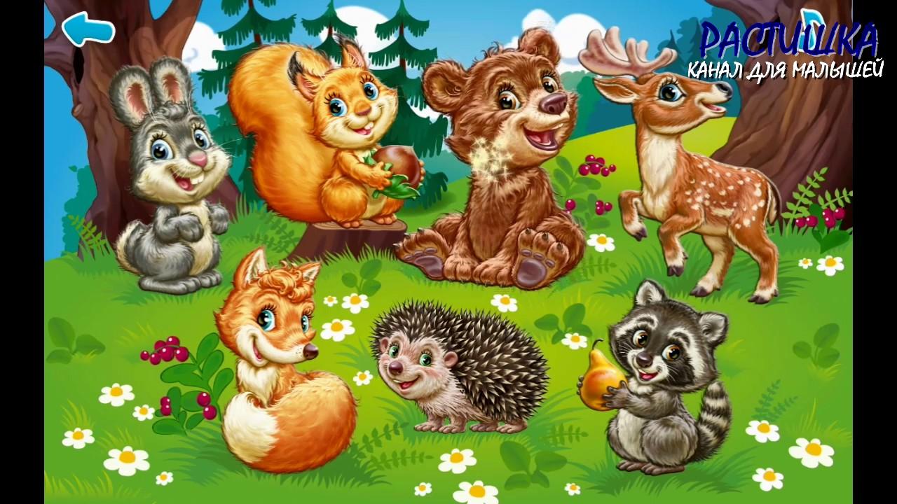 картинки лесные звери с детьми что недостаточно