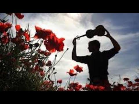 Edinburgh Napier - #IPlay4Peace Armistice Concert 2019