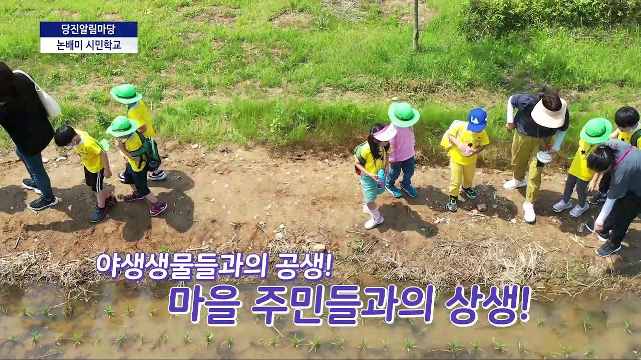 [2020 당진알림마당 11-2회] 논배미 시민학교 - YouTube
