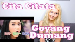Video Cita Citata - Goyang Dumang (Reaction) download MP3, 3GP, MP4, WEBM, AVI, FLV April 2018