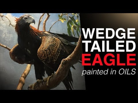 How to paint BIRDS | The Majestic WEDGE TAILED EAGLE | Oil P