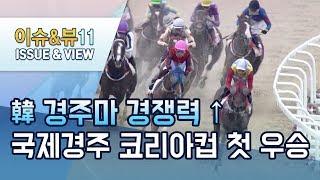 한국 경주마 경쟁력 '입증'…국제경주 코리아컵 첫 우승…