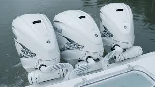 Yamaha 425 XTO - Mangrove Snapper - 2018   Florida Insider Fishing Report - Season 14, Episode 9