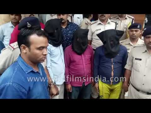 Bhopal's tailor man took life of 33 truck drivers | 12th Sep, 2018