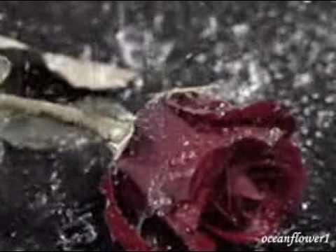 ERNESTO CORTAZAR - Dying of love(Morir De Amor)