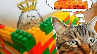 ЧТО ДЕЛАТЬ если КОТ грустит осенью?Домик для кота построить!Видео для детей.КОТ в своем доме!