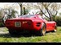 Il canto del V8 Montreal (carburatori) sulla Marciano 268a - Davide Cironi Drive Experience