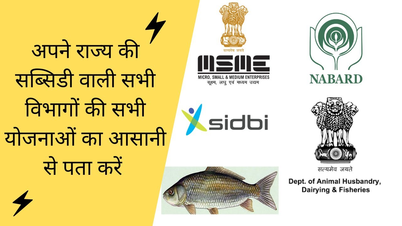 Government subsidy loan for business/State government loan application/Subsidy loan kaise le