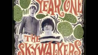 The Skywalkers - Changing The Colours Of Life
