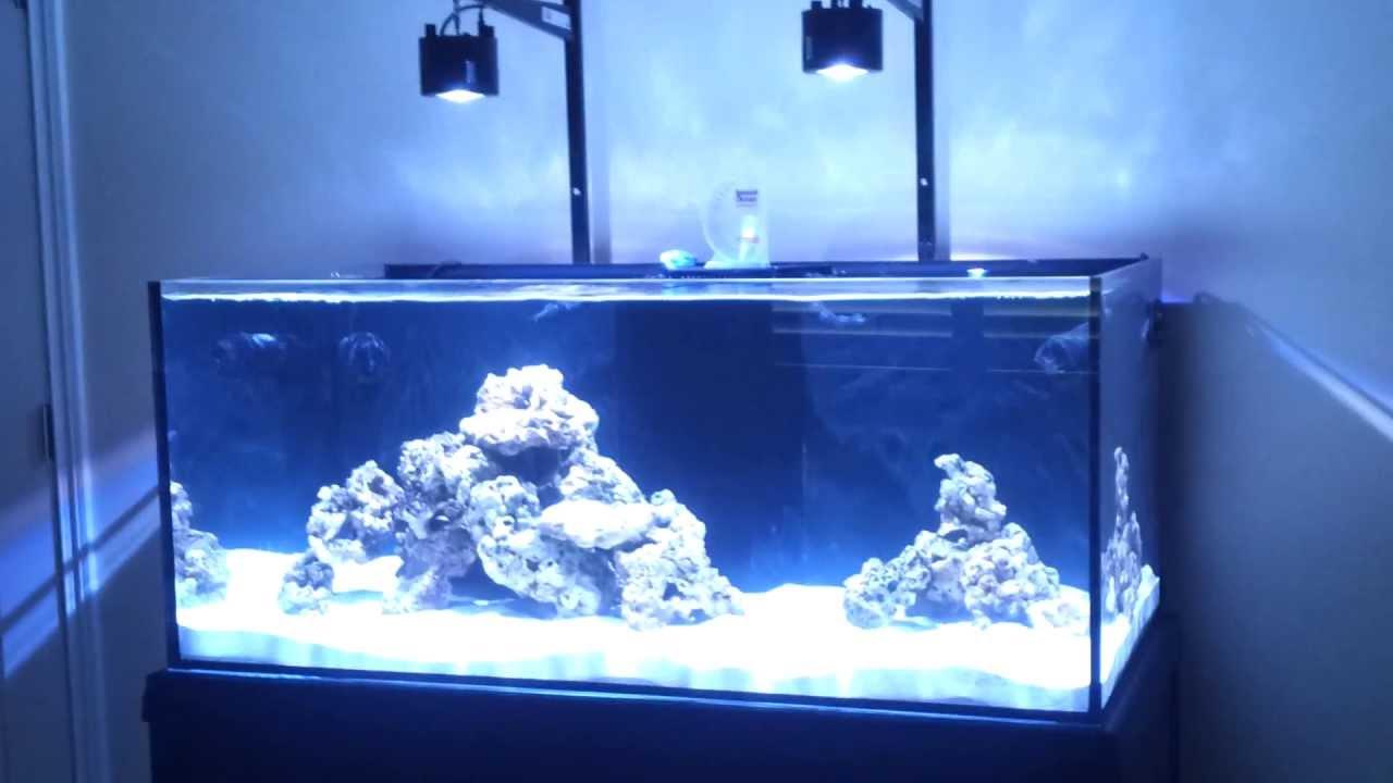100 Gallon Cad Lights Aquarium Setup Part 1 Youtube