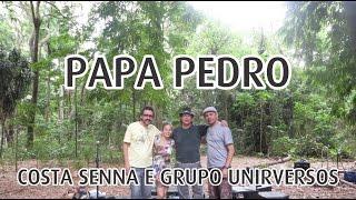 Baixar Costa Senna no Parque - Papa Pedro